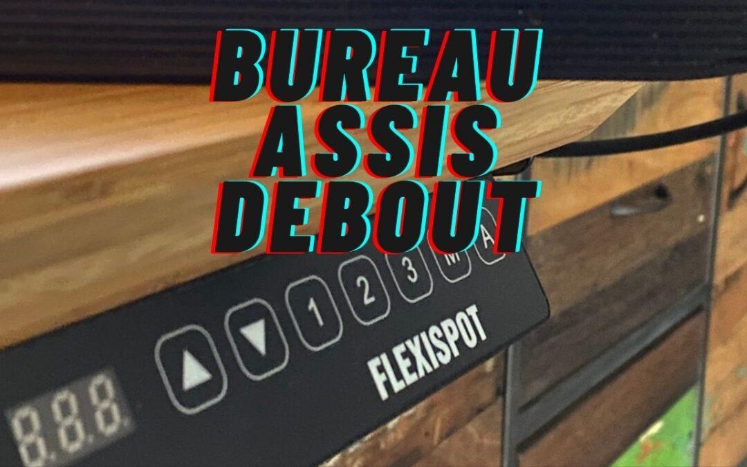 Bureau assis debout Flexispot, Avis sur mon achat !