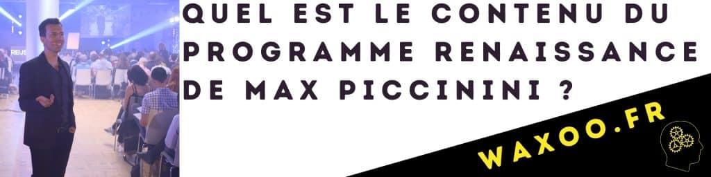 Quel est le contenu du programme renaissance de Max Piccinini